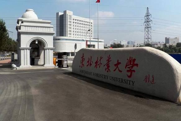 牛 大庆这所学校要出名了 是你孩子的母校吗