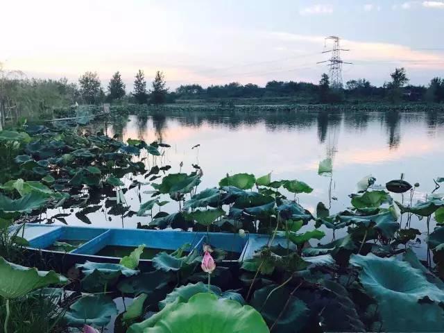 清晨咸宁风景照