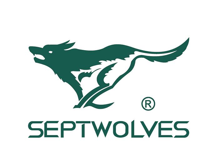 形象法 就是指运用动物,植物和自然景观来为品牌命名.