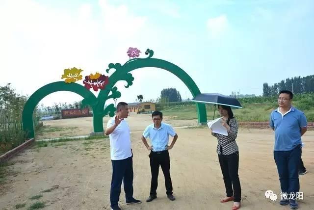 省规划设计院到龙阳镇调研城镇整体规划