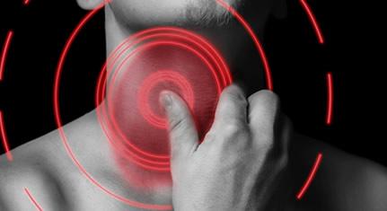 手绘咽喉剖面图