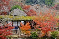 御船山,日本最大级红叶观赏乐园