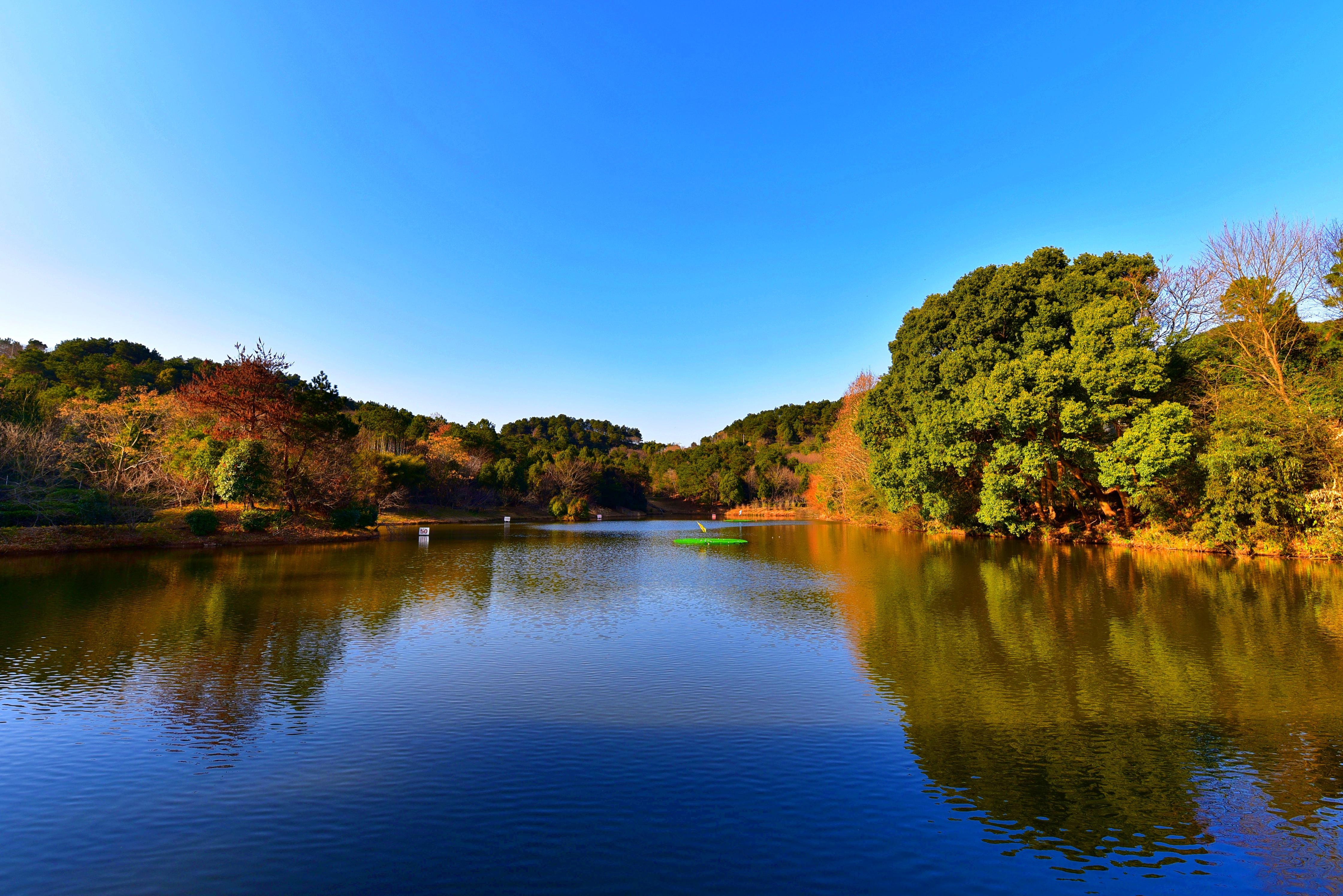 武汉黄陂最美的景区之一,风景如画,离市区仅40分钟车程!