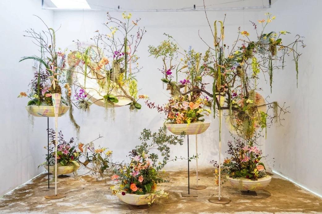 这面橱窗满足了所有花店的梦想!图片