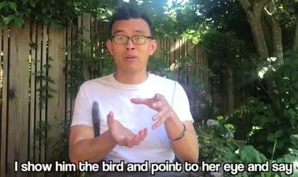 美国华裔围攻华人鸡店流泪解救6只母鸡 还在超市办葬礼