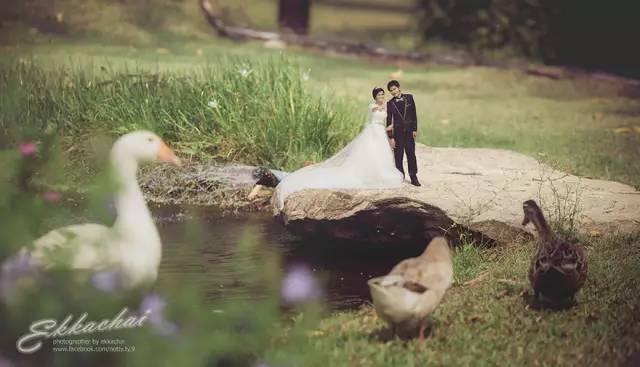 Свадебныйфотограф, уменьшившийсва