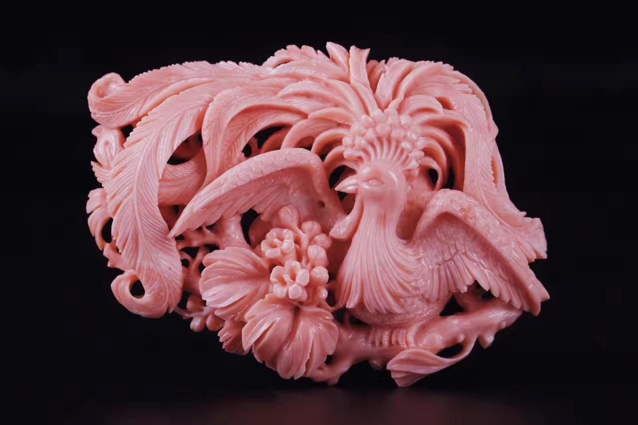 莫莫红珊瑚特点  莫莫红珊瑚的价格